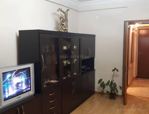 2-senyakanoc-bnakaran-vardzakalutyun-Yerevan-Erebuni