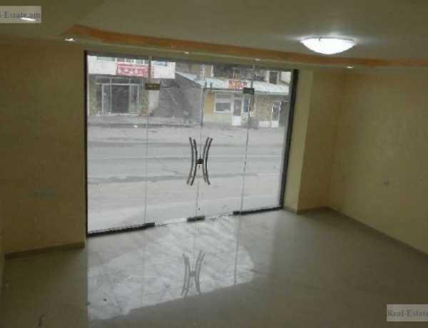0-senyakanoc-komercion-vardzakalutyun-Yerevan-Center