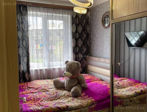 2-senyakanoc-bnakaran-vardzakalutyun-Yerevan-Nor-Norq